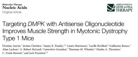 Gli oligonucleotidi antisenso nella DM1