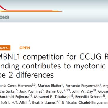 Una ricerca internazionale conferma il quadro clinico più lieve della DM2 rispetto alla DM1